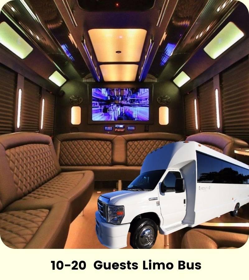 10-20 Person Cali Party Bus Restroom