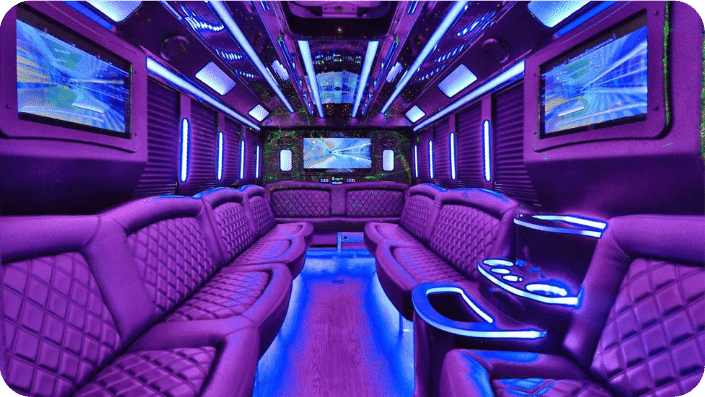 holiday tour party bus